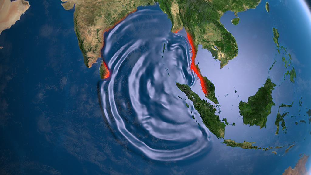 Hofer Krol Tsunami